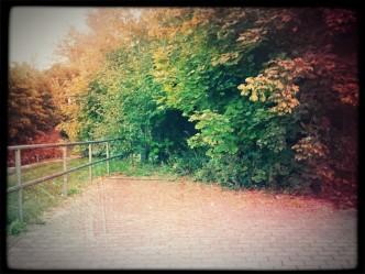 Führt dieser Weg nach Chemnitz
